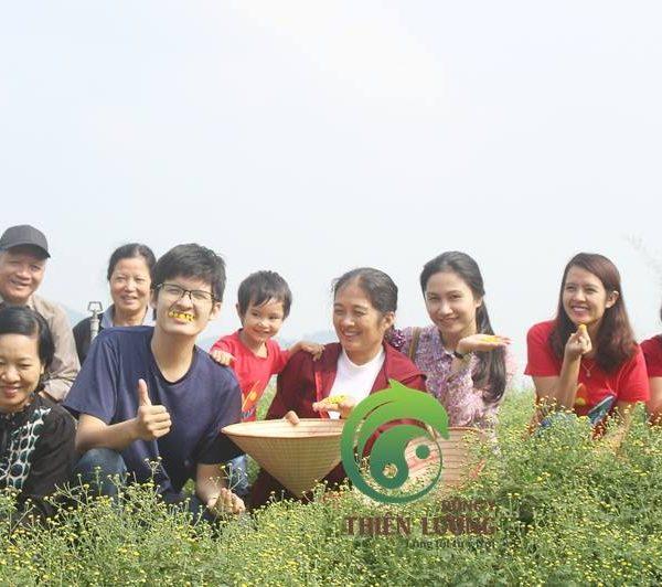 Đông Y Thiên Lương đi thăm vườn Cúc Hoa