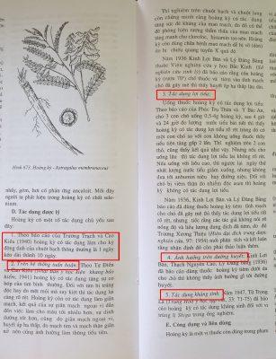 Theo báo cáo của Trương Trạch vào Cao Kiều (1940), hoàng kỳ có tác dụng làm cho kỳ động tình của chuột bạch thông thường là 1 ngày kéo dài thành 10 ngày.