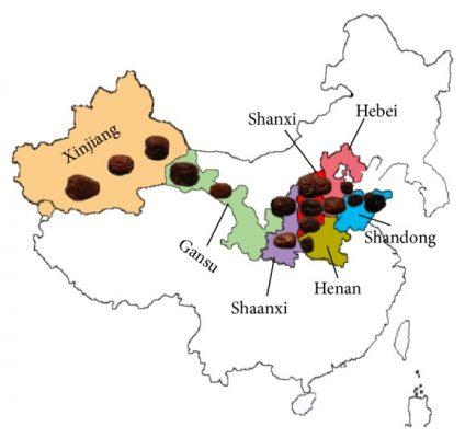 Các khu vực canh tác và khu vực sản xuất hồng táo chính ở Trung Quốc . Các khu vực trồng hồng táo ở Trung Quốc đã được làm nổi bật và hiển thị. Phụ trang cho thấy vị trí của các khu vực sản xuất chính của Trung Quốc, bao gồm các tỉnh Tân Cương, Cam Túc, Thiểm Tây, Sơn Tây, Hà Bắc, Hà Nam và Sơn Đông. Thiểm Tây và Sơn Tây được coi là khu vực canh tác đầu tiên của hồng táo.