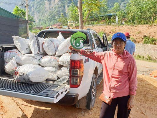 Thành quả sau quá trình lặn lộ imang về để chăm bón cho cây trồng, dược liệu tại vườn dược liệu hữu cơ.