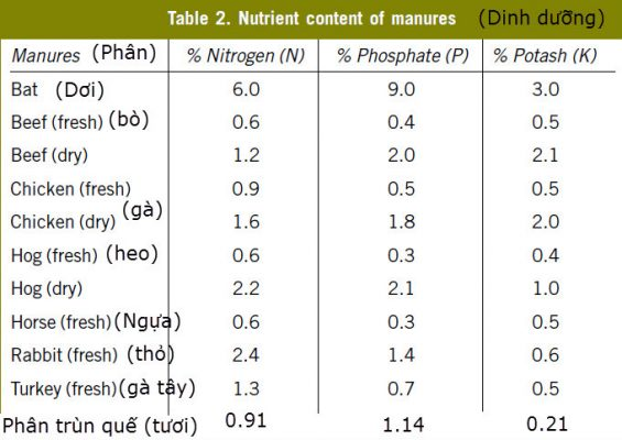 Bảng so sánh thành phần dinh dưỡng của phân dơi và các loại phân khác (Nguồn: Internet).