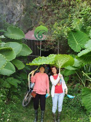 Đông Y Thiên Lương trước cửa hang dơi tự nhiên.