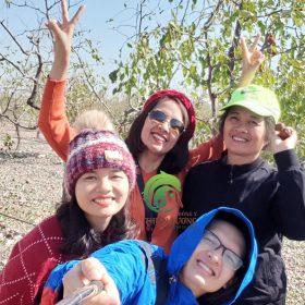Những giây phút tuyệt vời không thể quên tại vườn Hồng táo hữu cơ.