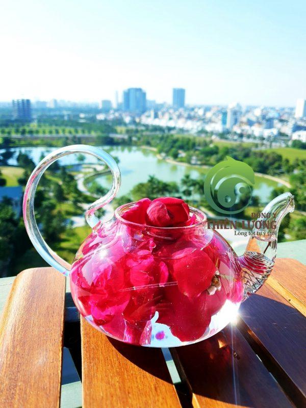 Những cánh hoa hồng cổ hữu cơ tươi thắm mang lại thức uống quyến rũ, quý phái và vô cùng thanh khiết.