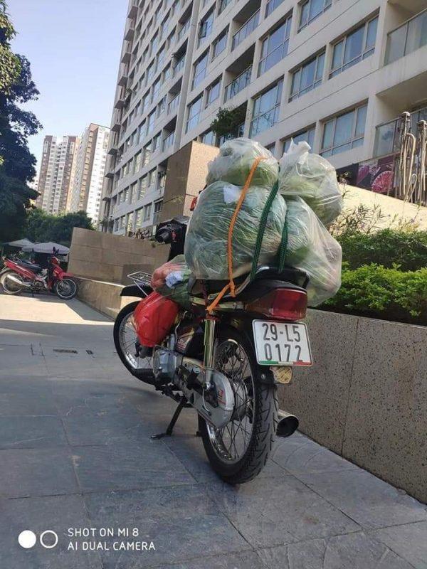 Thiên Lương cực kỳ yên tâm khi khi chiếc xe này hàng tuần chuyên chởrau hữu cơ giao tận tay khách.