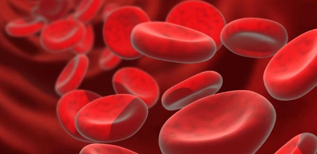 Dấu hiệu của bệnh thiếu máu không nên bỏ qua.