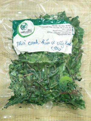 Dây thìa canh hữu cơ sấy lạnh - Đông y Thiên Lương.