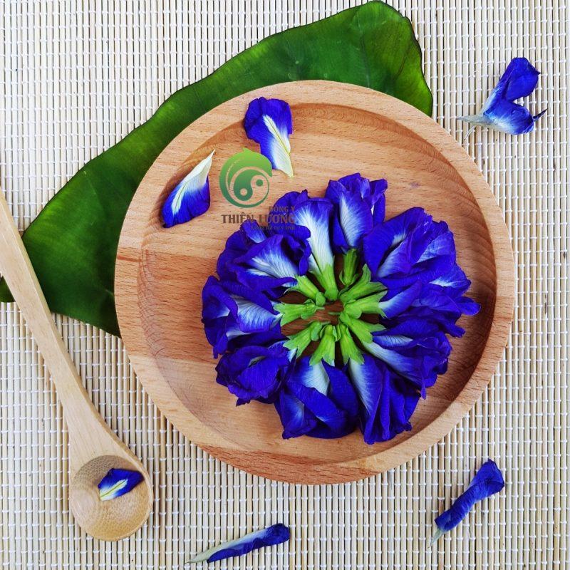 Hoa đậu biếc có nhiều tác dụng trong việc chữa bệnh và làm thực phẩm.