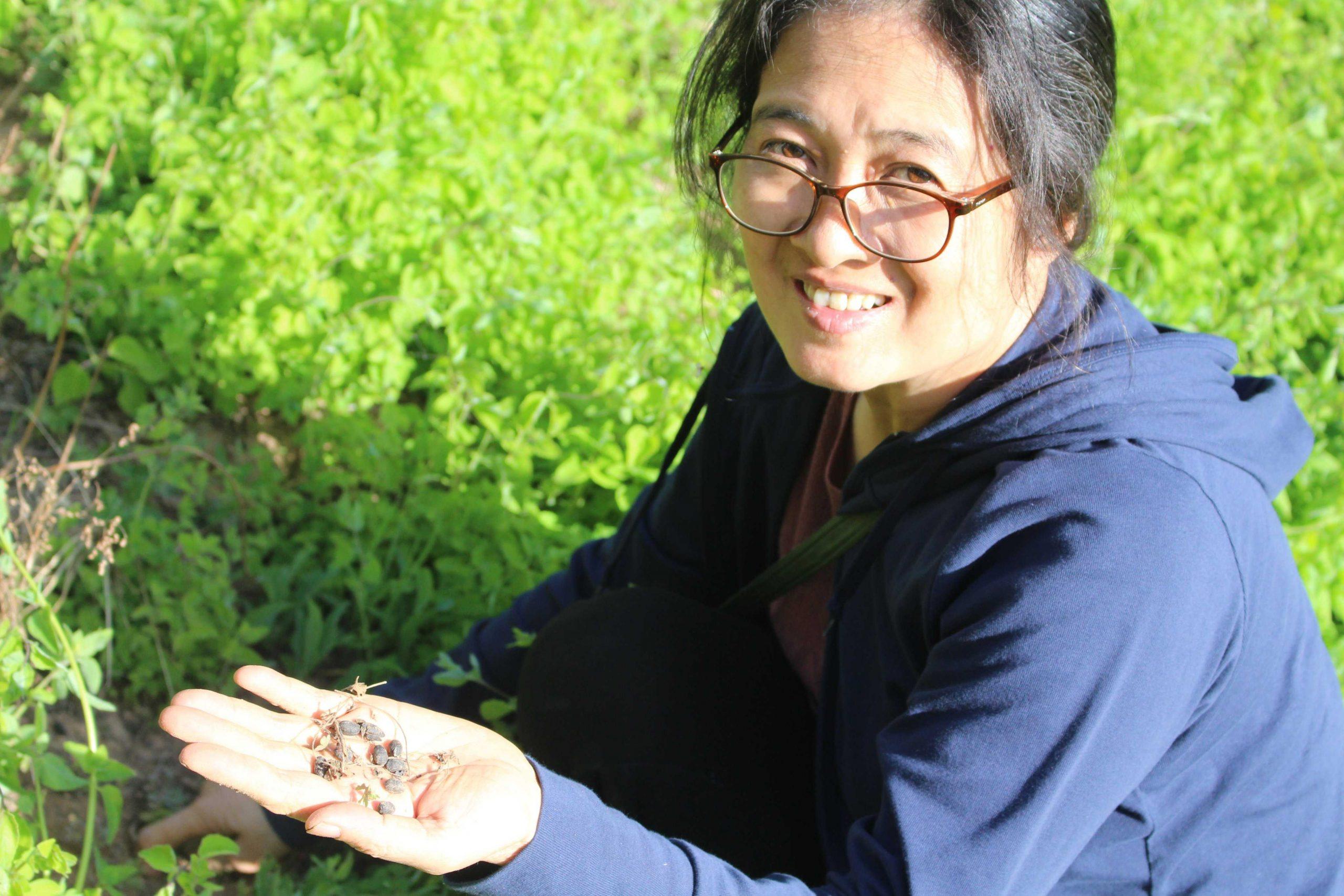 Kiểm tra độ mùn của đất và các hoạt động của vi sinh vật tại vườn hoàng kỳ hữu cơ (vị thuốc Đông y cực tốt cho bệnh giảm bạch cầu).